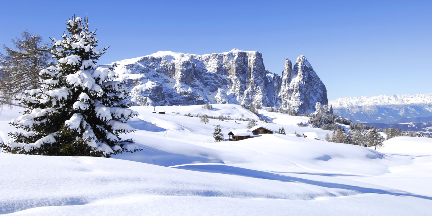 Die Ferienwohnung F 252 R Ihren Skiurlaub Im Skigebiet Seiser Alm Gr 246 Den Inmitten Der Zauberhaften